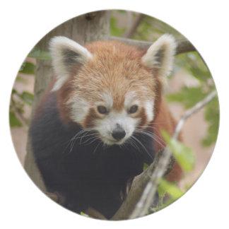 赤パンダ023 プレート