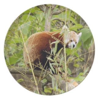 赤パンダ025 プレート
