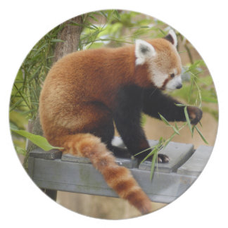 赤パンダ038 プレート