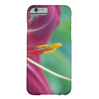 赤紫のワスレグサのiphone 6 barely there iPhone 6 ケース