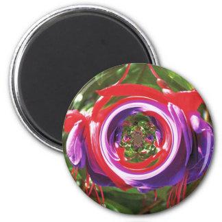 赤紫の「黒い瞳 マグネット