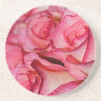 赤面の白いバラ コースター