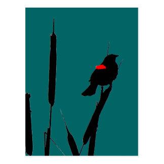 赤飛んだクロドリの&Cat尾 ポストカード