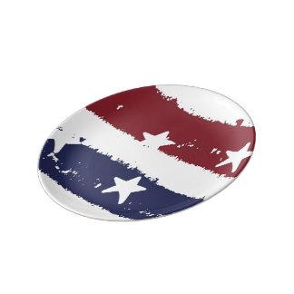 赤、白く及び青の動揺してなペンキのアメリカのプレート 磁器プレート