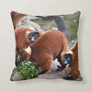赤ruffed lemurs c動物のグループ クッション