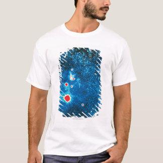 超新星1987年 Tシャツ