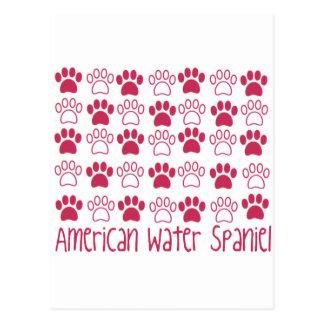 足のアメリカ水スパニエル犬による足 ポストカード