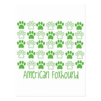 足のアメリカFoxhoundによる足 ポストカード