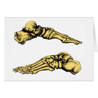 足の骨の側面図-黄色 カード