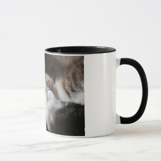 足猫のマグを舐めること マグカップ