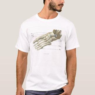 足15の骨 Tシャツ