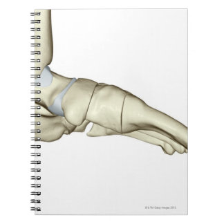 足7の骨 ノートブック