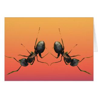 踊りの蟻 カード