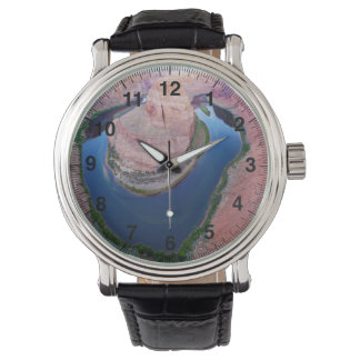 蹄鉄のくねりのアリゾナの平面図 腕時計
