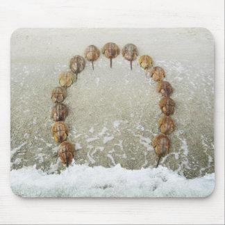 蹄鉄のビーチ マウスパッド