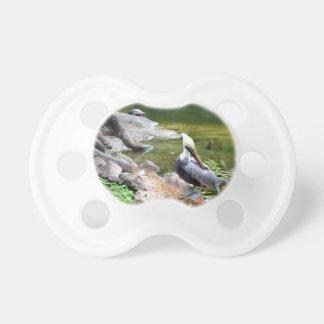 身繕いのペリカンのスライダーのカメの背部写真c.jpg おしゃぶり