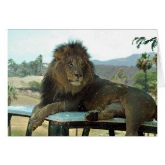車内広告のライオン カード