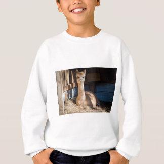 軽い子鹿のアルパカ スウェットシャツ