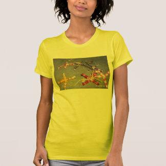 輝きのTシャツ Tシャツ