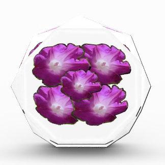 輝き白いnのピンクの花の花束のギフトの挨拶 表彰盾