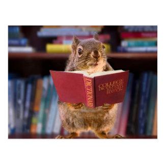 辞書を読んでいる頭が切れるなリス ポストカード