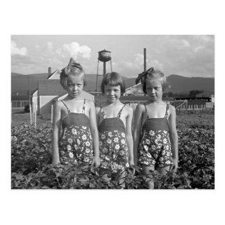 農場で働く女性1939年 ポストカード