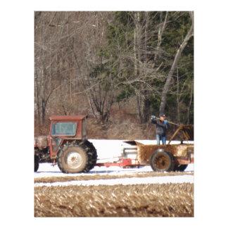 農場の春の生命 レターヘッド