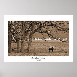 農場の生命 ポスター