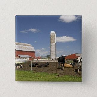 農場の赤い納屋そしてサイロの前の牛 5.1CM 正方形バッジ