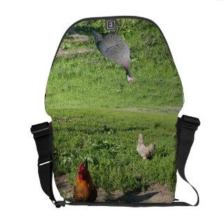 農場の鳥 クーリエバッグ