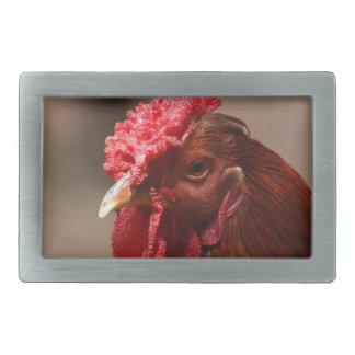 農場の鶏のポートレート 長方形ベルトバックル