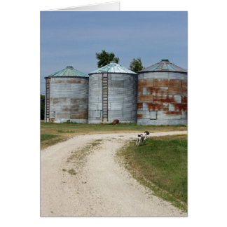 農場犬のサイロカード カード