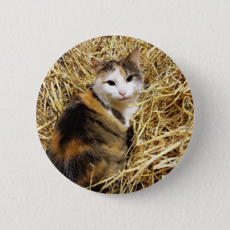 農場猫の写真Pinのバッジ 5.7cm 丸型バッジ