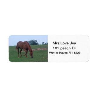 農場馬の住所Lables ラベル
