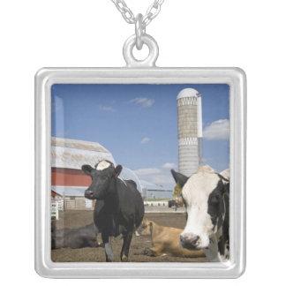 農場2の赤い納屋そしてサイロの前の牛 シルバープレートネックレス