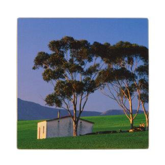 農業労働者のコテージおよび小麦畑、Overberg ウッドコースター