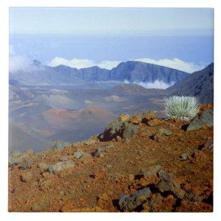 近い2からのHaleakalaの噴火口の縁のSilversword タイル
