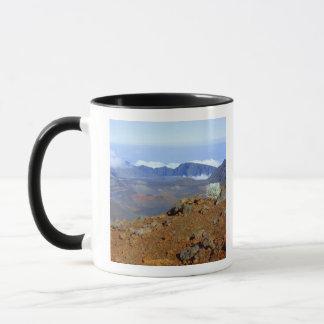 近い2からのHaleakalaの噴火口の縁のSilversword マグカップ