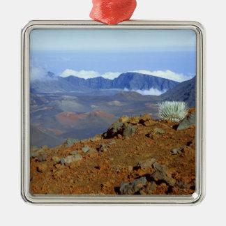 近い2からのHaleakalaの噴火口の縁のSilversword メタルオーナメント