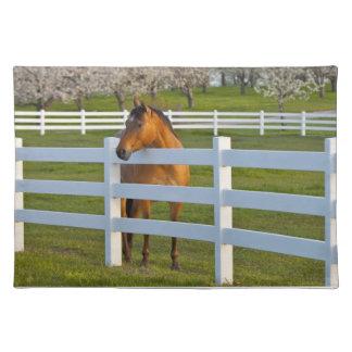 近の平頭の女子大による馬の姿勢 ランチョンマット