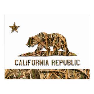 迷彩柄カリフォルニアくま ポストカード