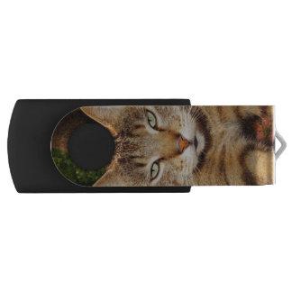 退屈させた子猫猫USBのフラッシュドライブ USBフラッシュドライブ