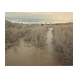 退役軍人の記念物橋の北の塩水性沼沢の川 ウッドウォールアート