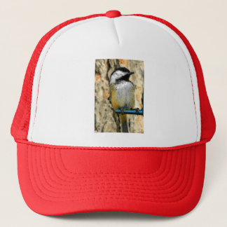 送り装置の《鳥》アメリカゴガラ キャップ