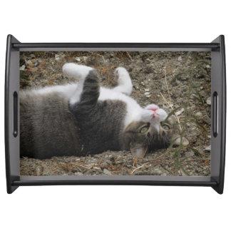 逆さまの子猫の大きいトレイ トレー