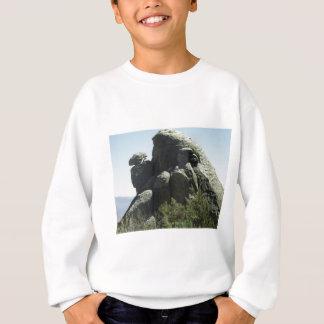造岩 スウェットシャツ
