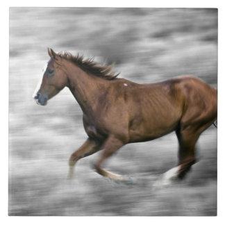連続した馬 タイル