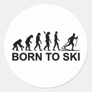 進化のクロスカントリー・スキー ラウンドシール