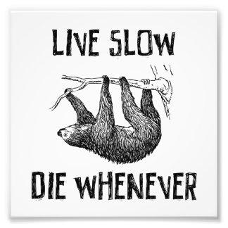 遅い住んで下さい、時はいつでも死んで下さい フォトプリント
