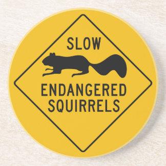 遅い絶滅寸前のリス、警告標識、メリーランド コースター